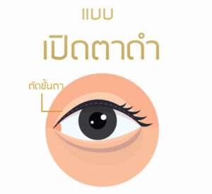 เปิดตาดำ ตาสองชั้นสวยๆ